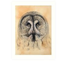 Great Grey Owl G041 by schukina Art Print