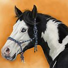 American Paint Horse P054 by schukina by schukinart