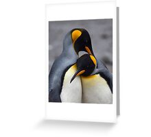 I Wuv You! (King Penguins, South Georgia) Greeting Card