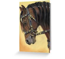 Horse portrait P037 Greeting Card