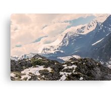 Mountains landscape in the summer. Soft hipster colors Canvas Print