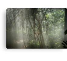 Rainforest indoors Canvas Print