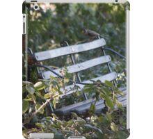 Peaceful seat. iPad Case/Skin