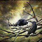 Two Crows by Linda Lees