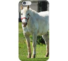 Home On The Range iPhone Case/Skin
