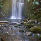 Beauchamp falls by bluetaipan