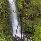 Erskine falls by bluetaipan