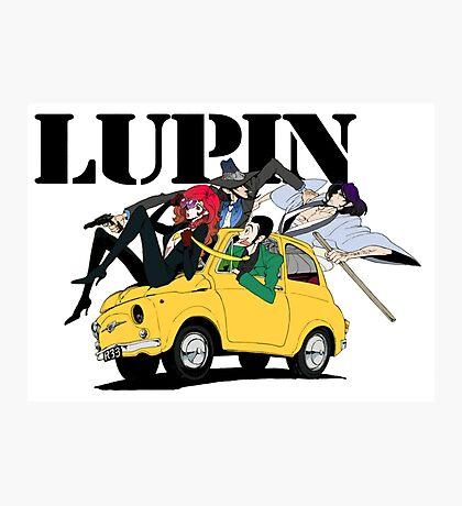 Lupin Photographic Print
