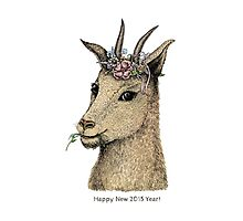 Goat - Sign of 2015 Year Photographic Print
