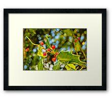 Holly, berries & bokeh Framed Print