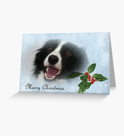 Border Collie Christmas Card Greeting Card