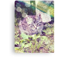 Retro portrait of WaiFai 3 Canvas Print