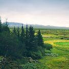Iceland by Jasper Smits