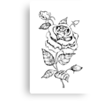 Black and white hand drawn rose Canvas Print