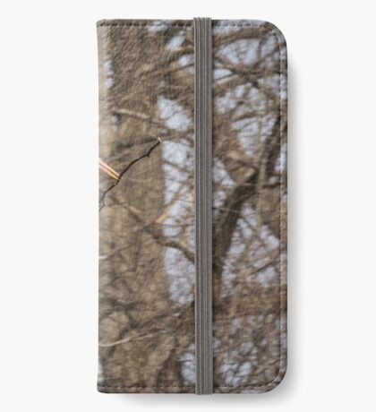 Great Blue Heron 2014-2 iPhone Wallet/Case/Skin