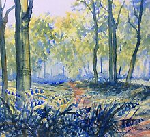 Bluebells in Sewerby Park by Glenn Marshall