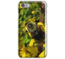 Bee On Flower Stalk iPhone Case/Skin