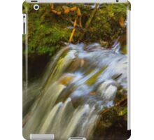 Almost Abstract in the Forest iPad Case/Skin
