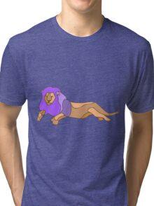Funky Fresh Feline Tri-blend T-Shirt