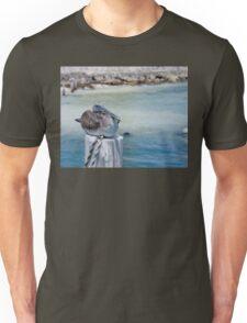 Pelican Bay Unisex T-Shirt