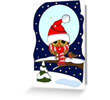 Baby Owl with oversized Santa hat and scarf Greeting Card