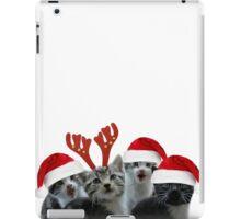 Kitten Time Mistletoe and Wine iPad Case/Skin