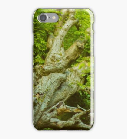 Anatomy of Nature iPhone Case/Skin