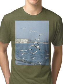 Seagulls Nature Tri-blend T-Shirt
