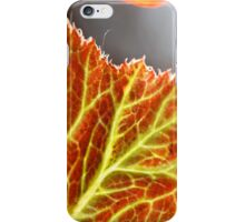 fall veins iPhone Case/Skin