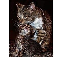 Momma & Babe Photographic Print