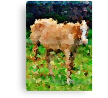Horse to the Second Power (cubed) - greeting card and print Canvas Print