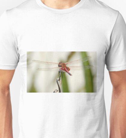 Common-glider Dragonfly Unisex T-Shirt