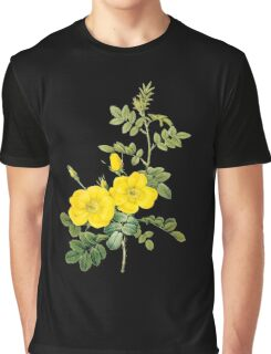 Yellow rose Graphic T-Shirt