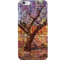 Desert Varnishes - Namibia iPhone Case/Skin