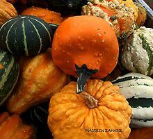 Gourds 4 by Maureen Zaharie