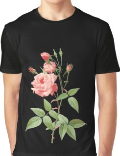 Pink rose Graphic T-Shirt