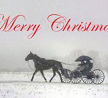 Merry Christmas Buggy Ride by Gene Walls