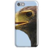 Harris hawk iPhone Case/Skin