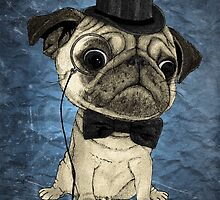 Pug; Gentle pug (color version) by barruf
