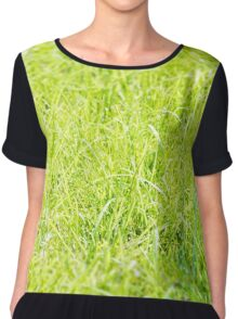 Close-up on the texture of green fresh grass. Nature Chiffon Top