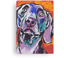 Weimaraner Dog Bright colorful pop dog art Canvas Print