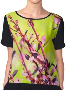Extremely green nature background. Red leaves of Berberis. Spring photo Chiffon Top