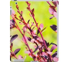 Extremely green nature background. Red leaves of Berberis. Spring photo iPad Case/Skin