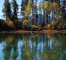 Autumn Reflections by Jared Manninen