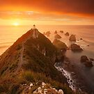 Nugget Point Sunrise by Nick Skinner