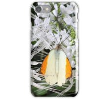 Great Orange Tip Butterfly iPhone Case/Skin