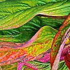 Leafy Abstract by John Butler