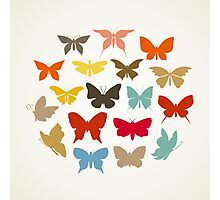 Art butterfly3 Photographic Print