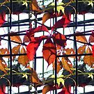 Autumn Leaves - Fenced by kenspics