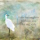 I Am Incomplete Without You By My Side ~ Greeting Card by Susan Werby